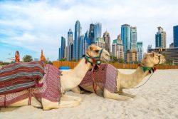 Flitterwochen in Dubai – eine ganz außergewöhnliche Hochzeitsreise