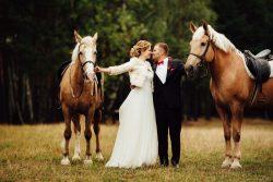 Tierische Hochzeitsgäste