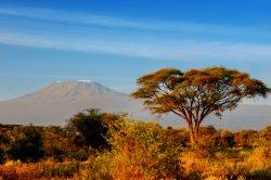 Abenteuer und Entspannung – Flitterwochen in Tansania und auf Sansibar