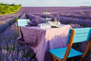 Tischdekoration Lavendel